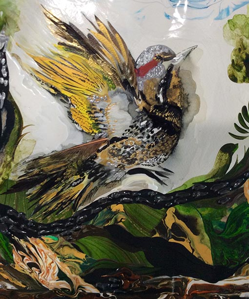 Original acrylic painting of a flicker by Diana Zoe Coop