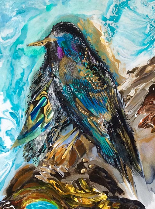 Original acrylic painting of a starling by Diana Zoe Coop